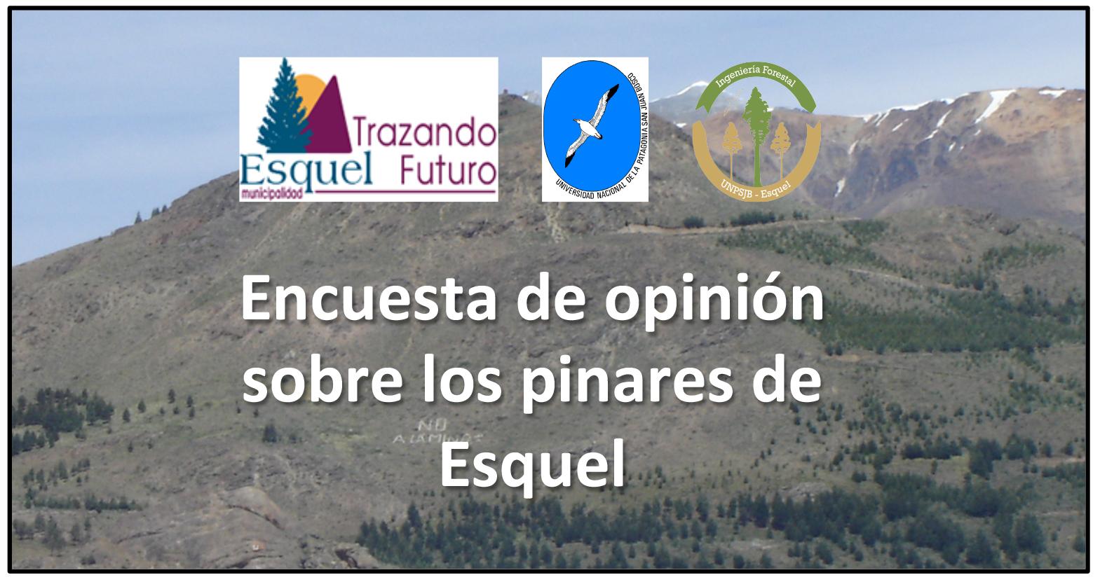 banner para promocionar encuesta