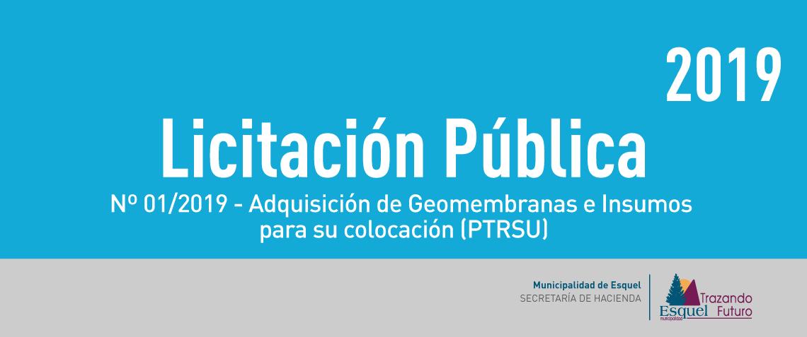 Licitacion-publica-01.2019